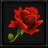 复活玫瑰*2