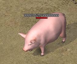 散人传说怒刷白猪